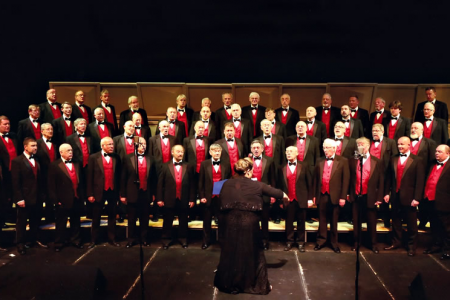 Onstage in the over 41 voice Competition in the Hall for Cornwall - 29th April.